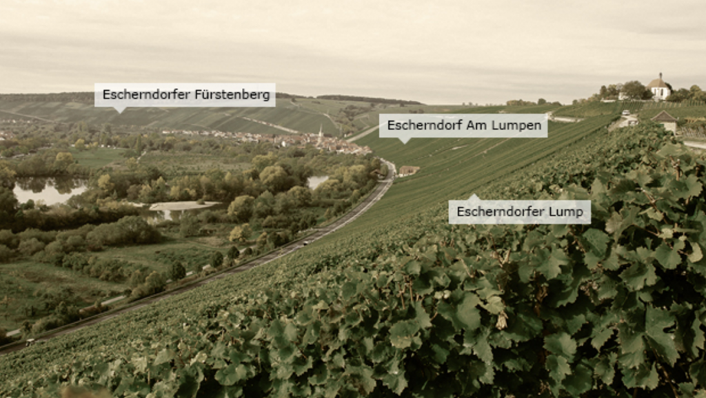 A Silvaner special: Horst Sauer masterclass
