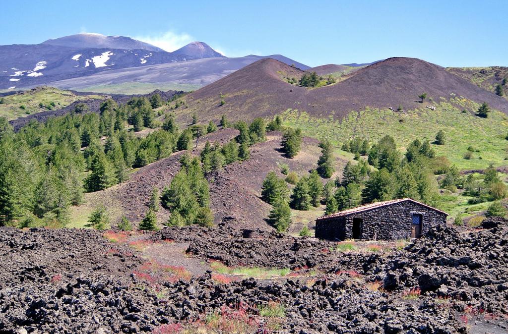 A profile of Frank Cornelissen – a true Etna pioneer