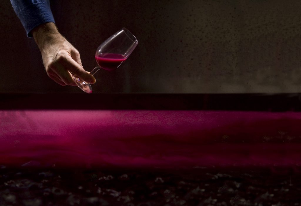 Gallery: Winemaking by Jon Wyand
