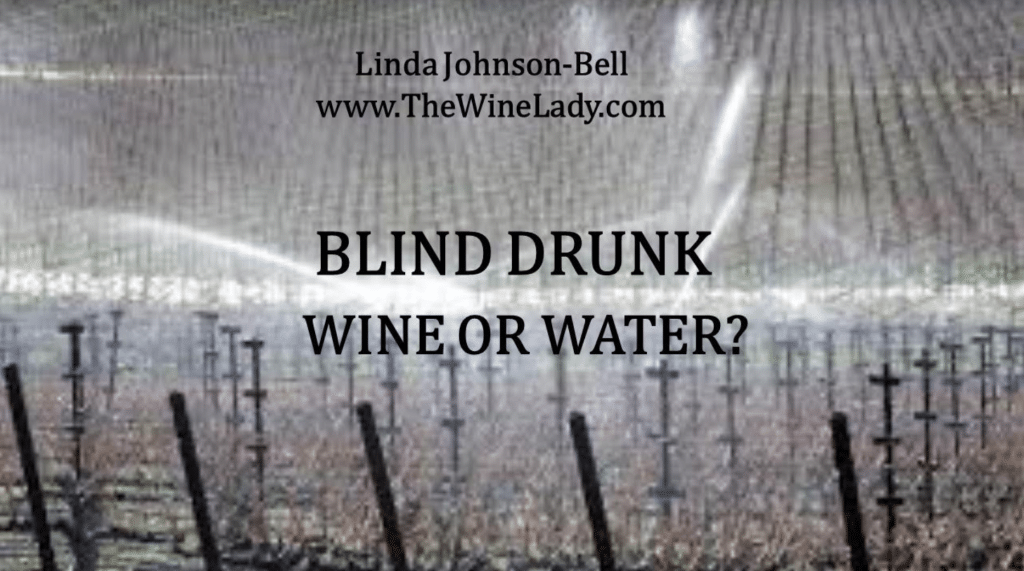Blind Drunk – Wine or Water? Linda Johnson-Bell launches Indigogo campaign