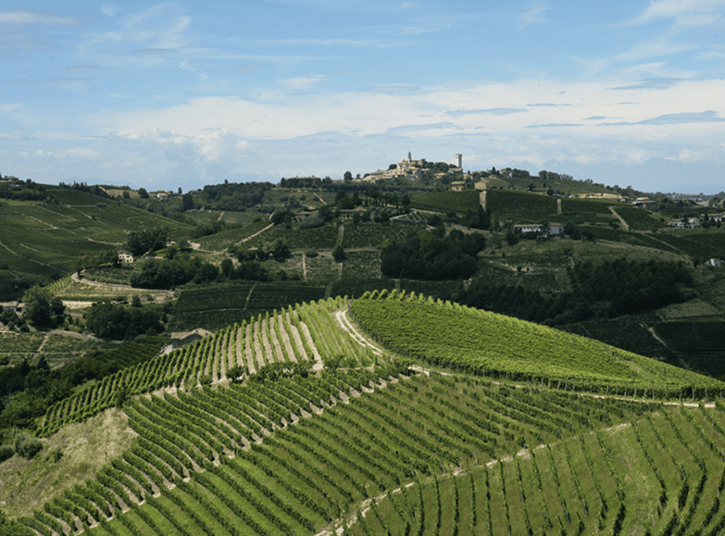 Dry Asti, Barbera, a new DOCG and the Brachetto beyond