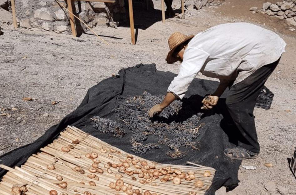 Rediscovering Atacama traditions
