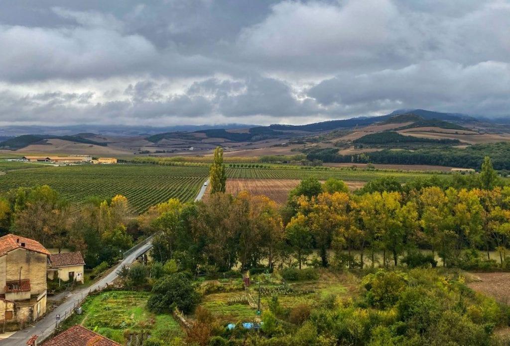 Rediscovering a Pamplonan Pago in Otazu