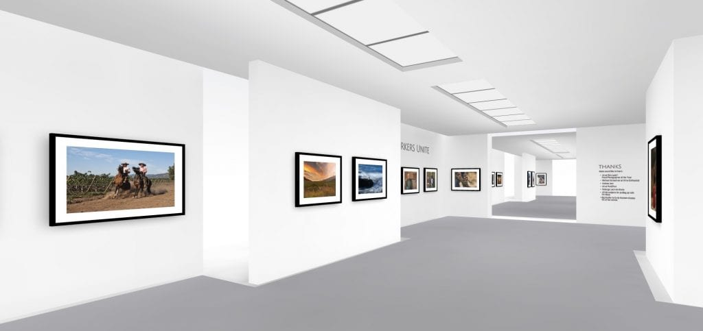 Matt Wilson's photography goes on exhibition, in 3D