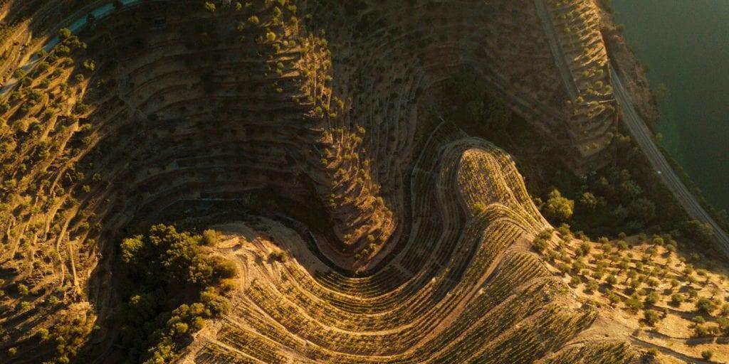 Exploring Quinta da Boavista and the old vines of Douro with Carla Tiago